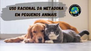 Uso Racional da Metadona em Cães e Gatos