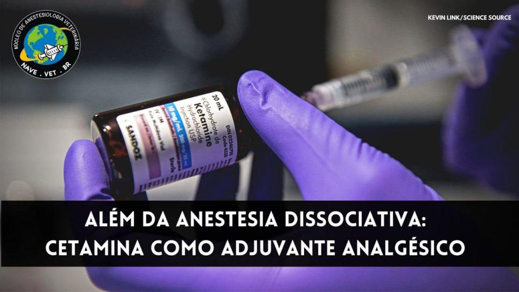 Além da anestesia dissociativa: Cetamina como adjuvante analgésico