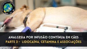 Analgesia por infusão contínua em cães – Lidocaína, Cetamina e Associações